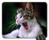 Cat Aaaa... it's monday! Mouse Pad, Mousepad (Cats Mouse Pad)