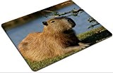 Liili Mousepad a close up mammal Photo 1423202 Low Friction Tracking Surface LOL Dota 2 WOW