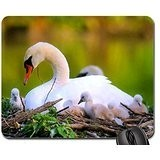 The nest Mouse Pad, Mousepad (Birds Mouse Pad)